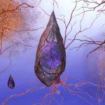 Nuevo sistema para detectar Alzheimer